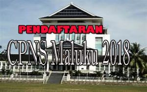 Pemprov Maluku Akan Buka Pendaftaran CPNS Pada Bulan Juli dan September 2018